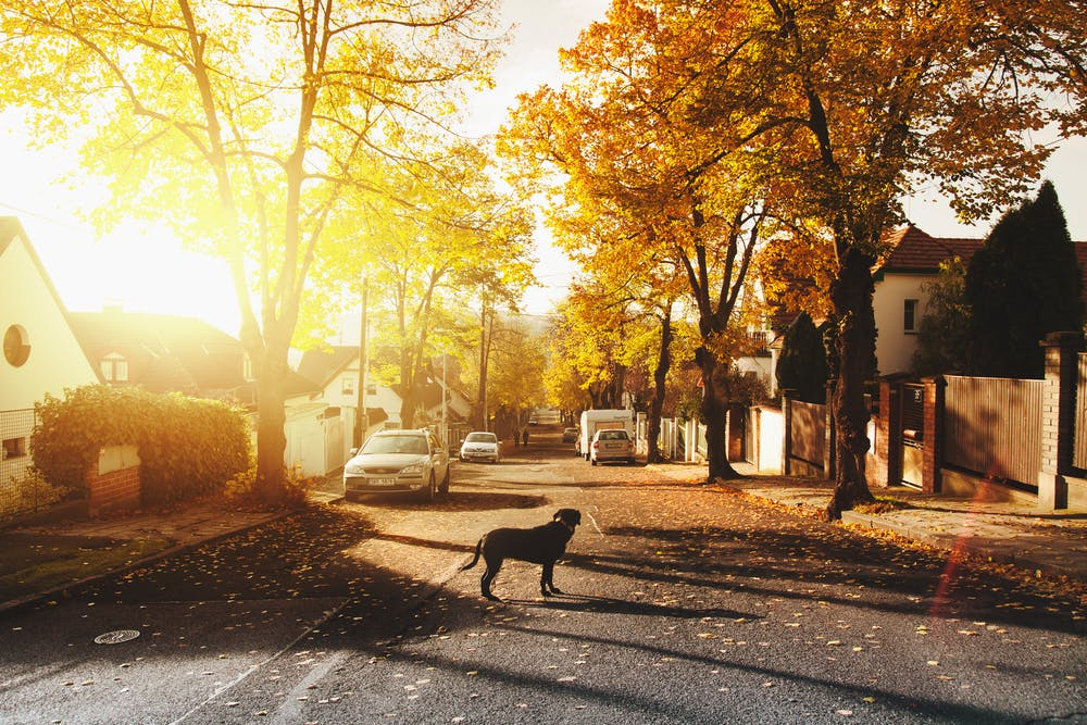 地域住民は幸せに安心して快適に暮らしたい
