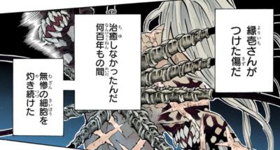 鬼滅の刃(きめつのやいば)194話ネタバレ|無惨の古傷