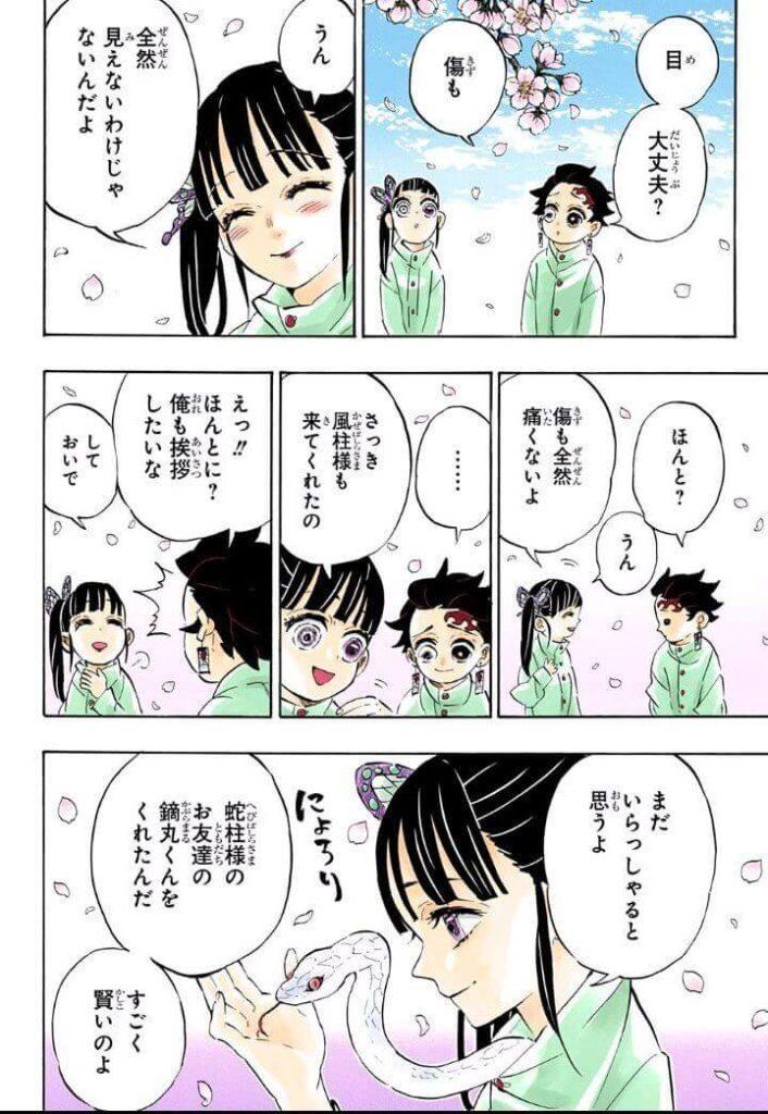 鬼滅の刃(きめつのやいば)204話ネタバレ|炭治郎とカナヲ