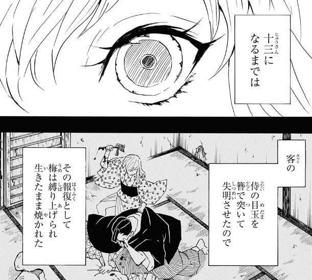 上弦の陸・妓夫太郎(ぎゅうたろう)の過去 / 人間だった頃(幼少時代)